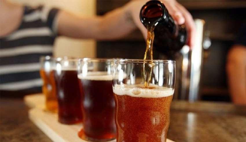 Projeto de lei pretende tornar Florianópolis a Capital da Cerveja Artesanal | Foto Divulgação